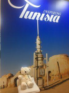 miś tunezja